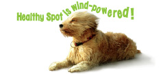 Healthy Spot is 100 percent Wind Powered